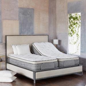 Costco Adjustable Bed