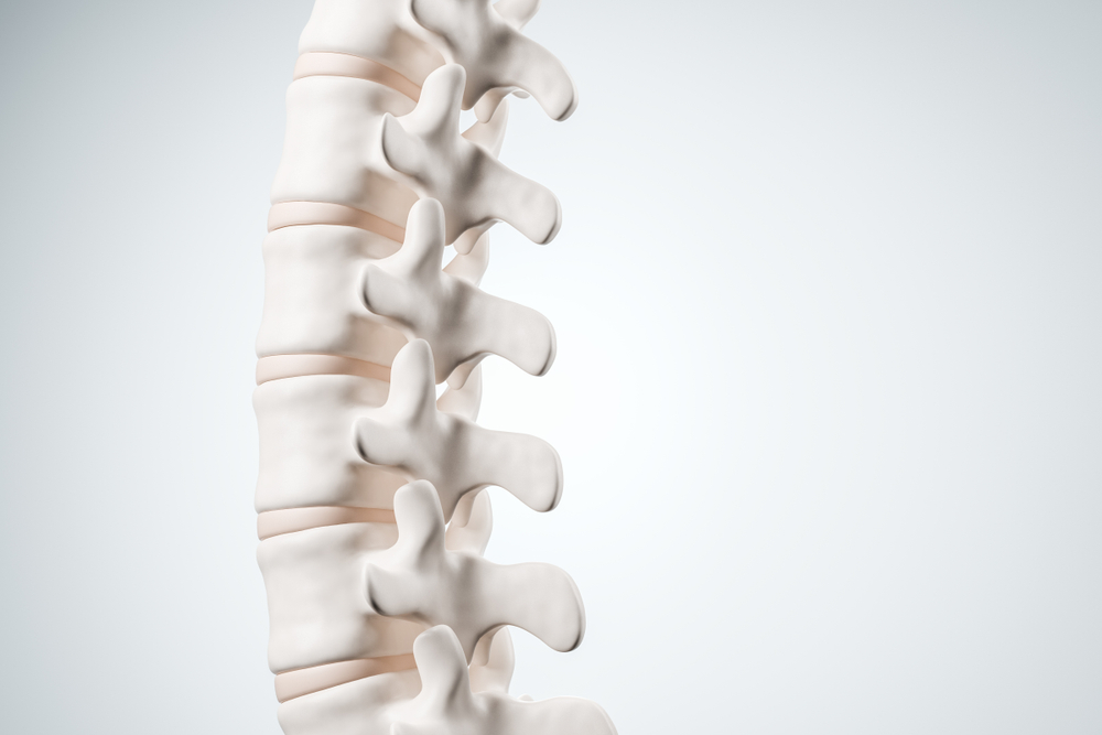 healthy spine bending