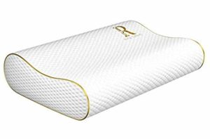 Royal Therapy Memory Foam Pillow