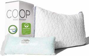 Coop Home Goods Eden Adjustable Shredded Gel Memory Foam